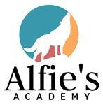 Alfie's Academy